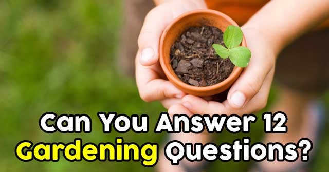 Can You Answer 12 Gardening Questions?