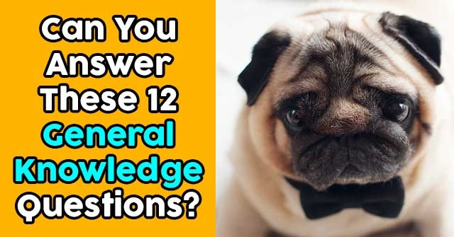 Can You Answer These 12 General Knowledge Questions?