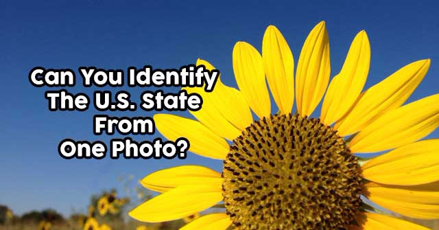 Can You Identify The U.S. State From One Photo?