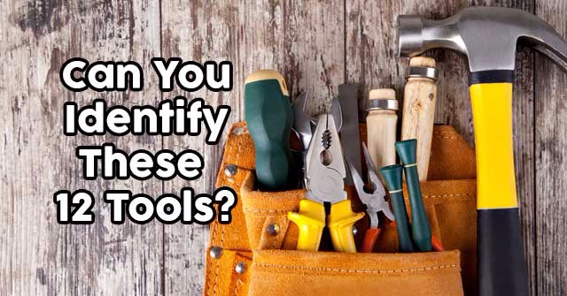 Can You Identify These 12 Tools?
