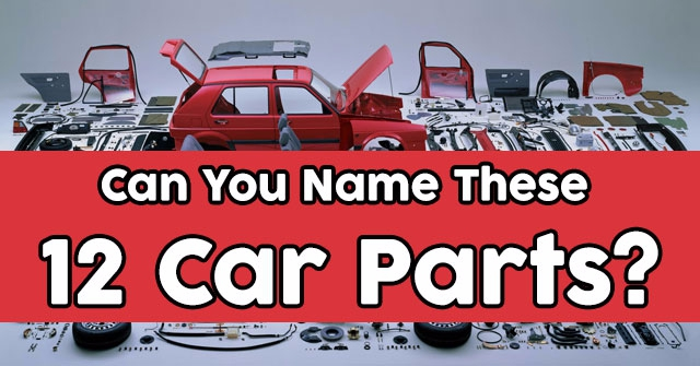 Can You Name These 12 Car Parts?