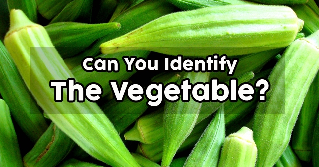 Can You Identify The Vegetable?
