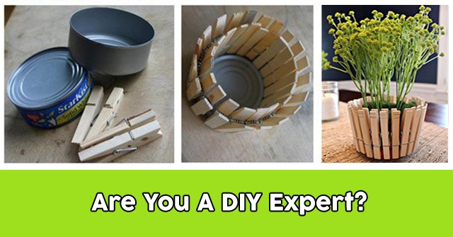 Are You A DIY Expert?