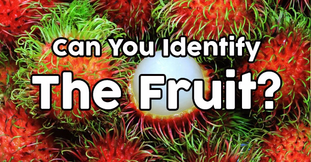 Can You Identify The Fruit?