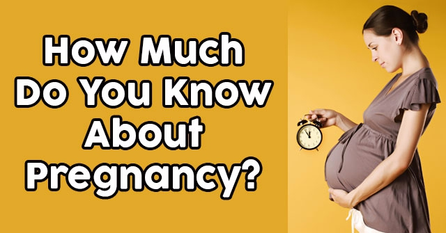 How Much Do You Know About Pregnancy?