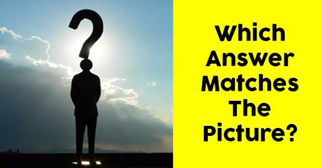 Which Answer Matches The Picture?