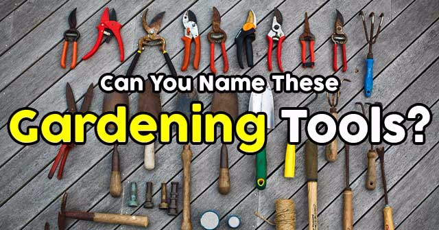 Can you name these gardening tools quizpug for Gardening tools names 94