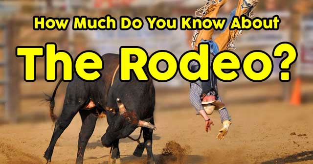 How Much Do You Know About The Rodeo?
