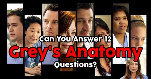 Can You Answer 12 Grey\'s Anatomy Questions? | QuizPug