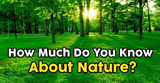 How Much Do You Know About Nature?