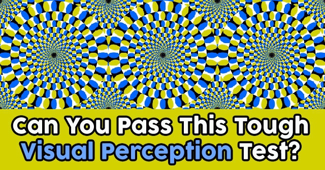 Can You Pass This Tough Visual Perception Test?