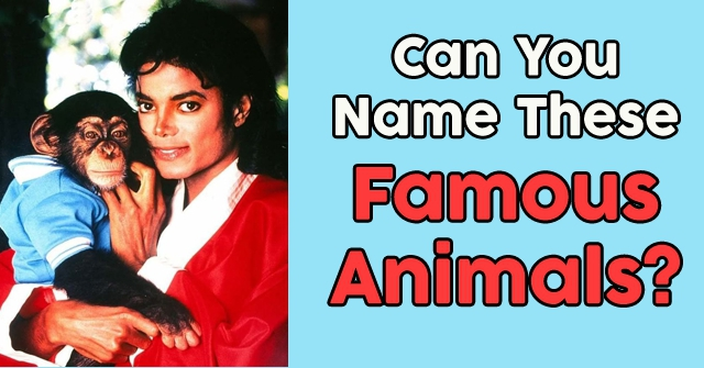 Can You Name These Famous Animals?