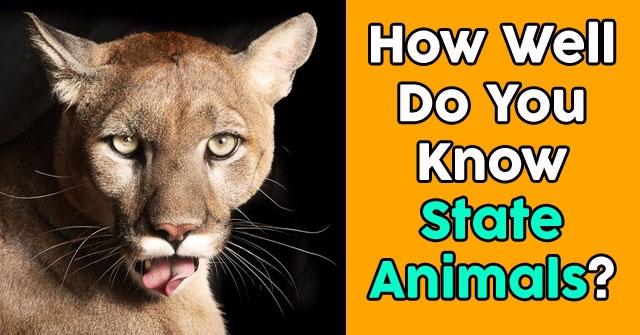 How Well Do You Know State Animals?