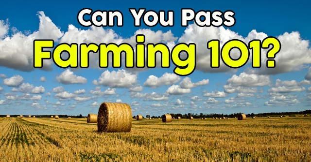 Can You Pass Farming 101?