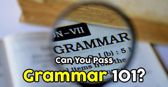 Can You Pass Grammar 101?