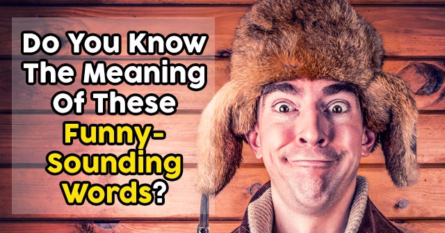 Do You Know The Meaning Of These Funny-Sounding Words?