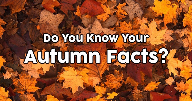 Do You Know Your Autumn Facts?