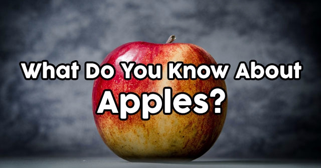 What Do You Know About Apples?