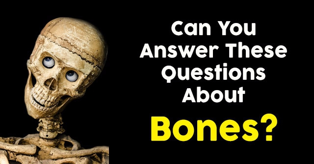Can You Answer These Questions About Bones?