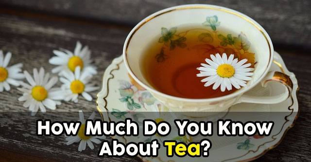 How Much Do You Know About Tea?