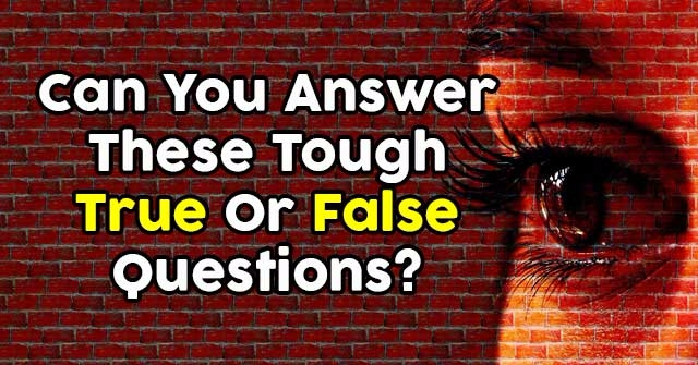 Can You Answer These Tough True Or False Questions?