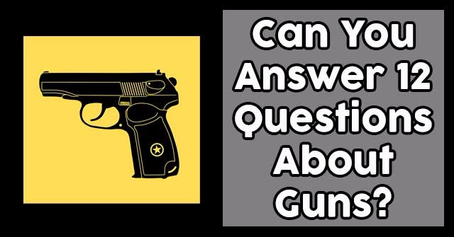 Can You Answer 12 Questions About Guns?