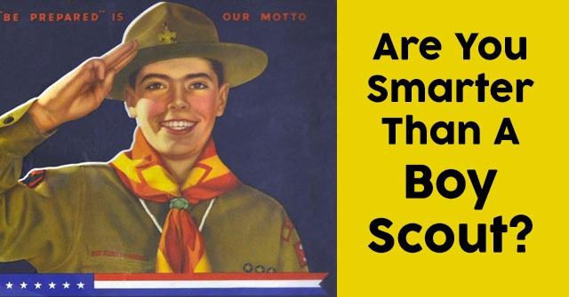 Are You Smarter Than A Boy Scout?