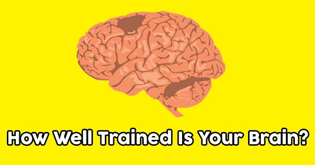 How Well Trained Is Your Brain?