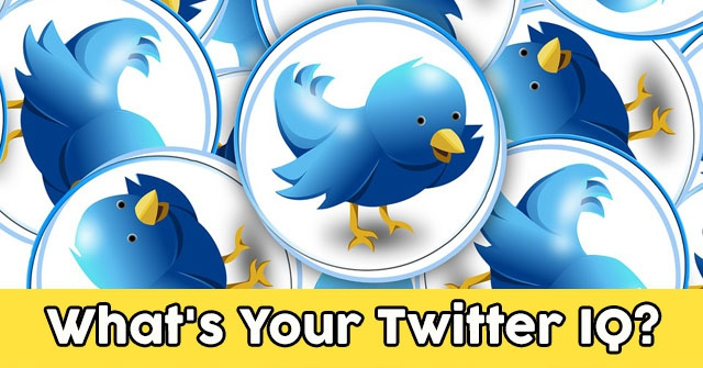 What's Your Twitter IQ?