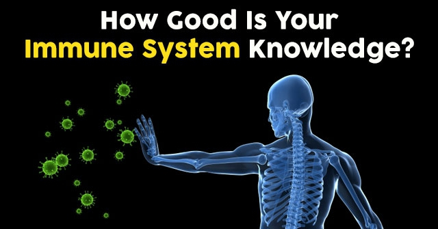 How Good Is Your Immune System Knowledge?