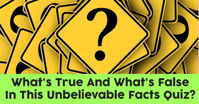 What's True And What's False In This Unbelievable Facts Quiz?