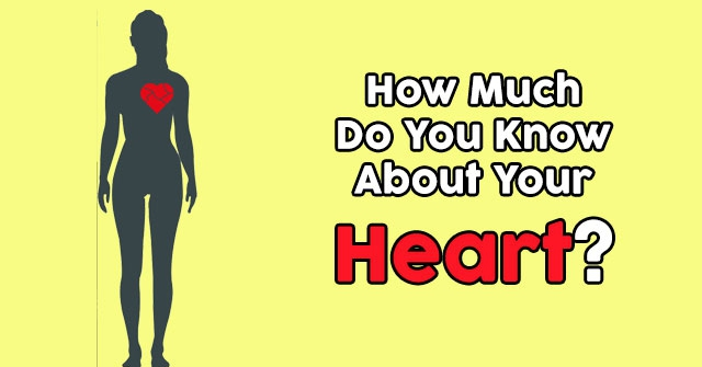 How Much Do You Know About Your Heart?