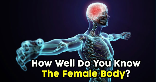 How Well Do You Know The Female Body?
