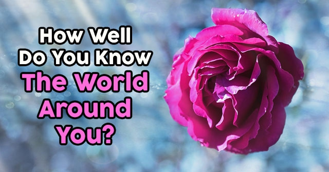 How Well Do You Know The World Around You?