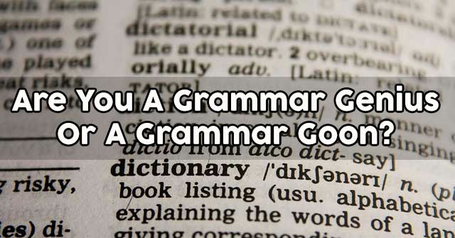 Are You A Grammar Genius Or A Grammar Goon?