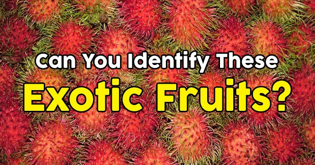Can You Identify These Exotic Fruits?