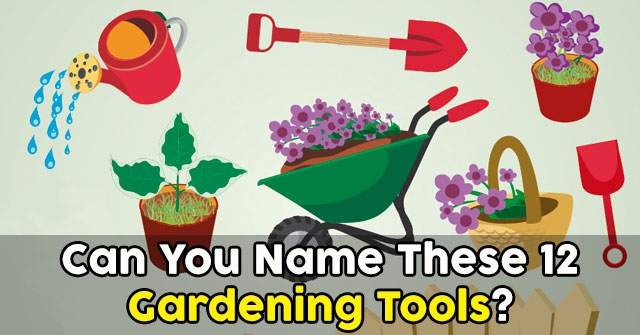 Can You Name These 12 Gardening Tools?