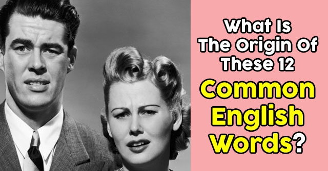 What is the origin of these 12 common english words quizpug - What is the meaning of commode ...