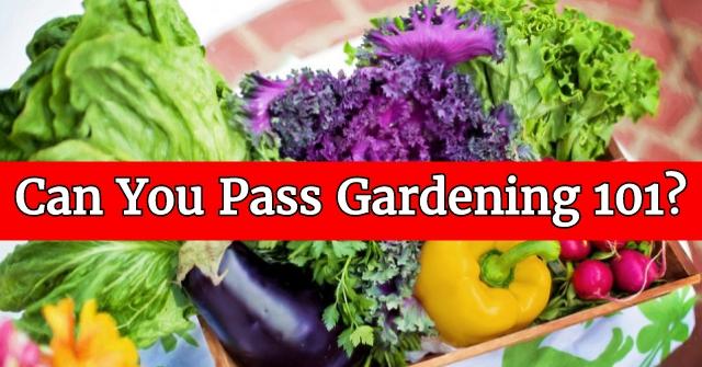 Can You Pass Gardening 101?