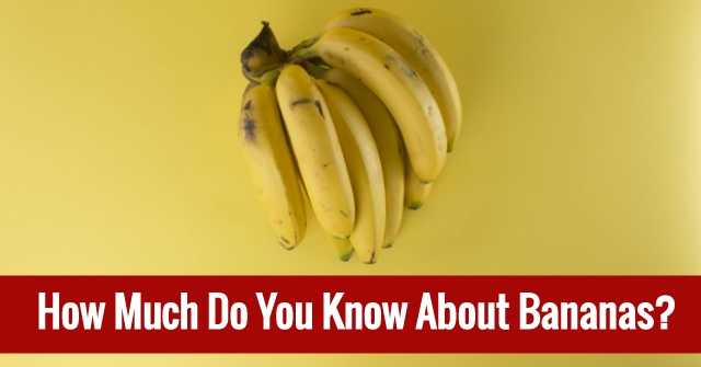 How Much Do You Know About Bananas?