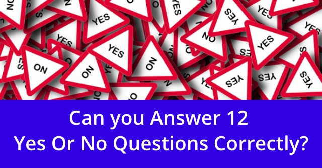 Can You Answer 12 Yes Or No Questions Correctly?