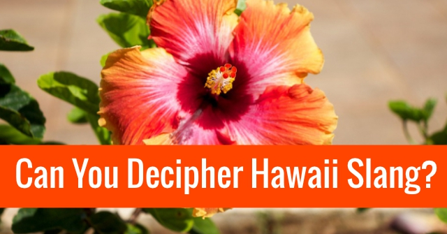 Can You Decipher Hawaii Slang?