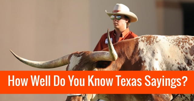 How Well Do You Know Texas Sayings?