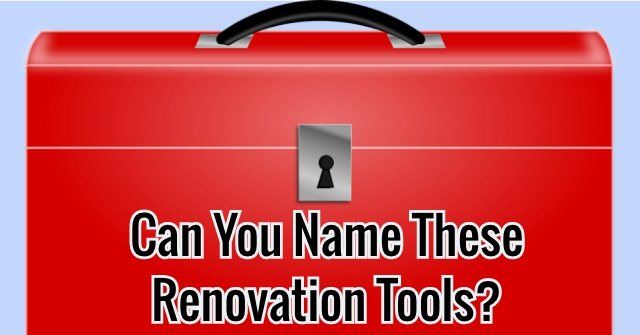 Can You Name These Renovation Tools?