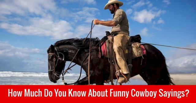 How Much Do You Know About Funny Cowboy Sayings?