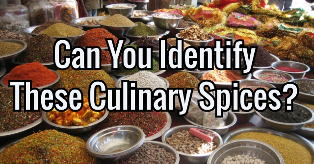 Can You Identify These Culinary Spices?
