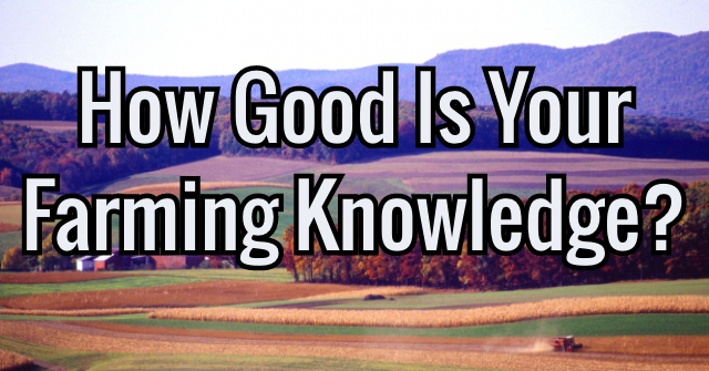 How Good Is Your Farming Knowledge?