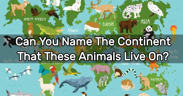 Can You Name The Continent That These Animals Live On?