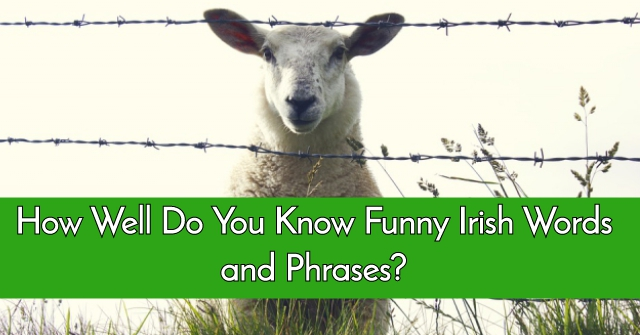 How Well Do You Know Funny Irish Words and Phrases?