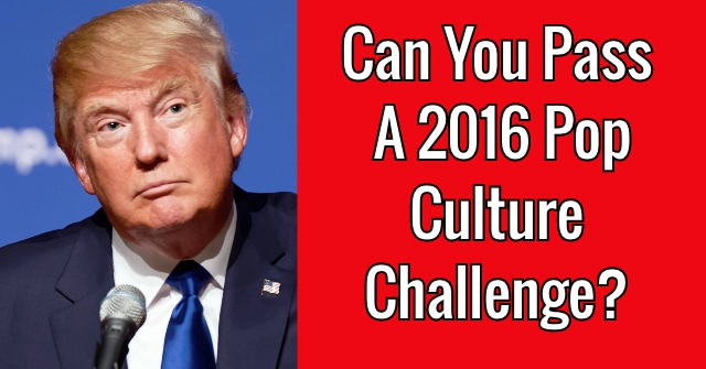 Can You Pass a 2016 Pop Culture Challenge?